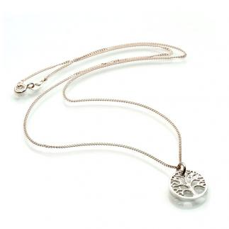 925 Silver pendant and chain